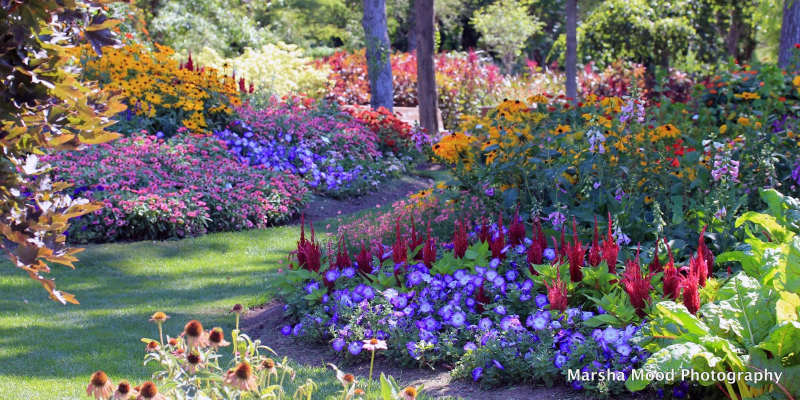 By Kate Bast   Photos Courtesy Of Janesville Rotary Botanical Gardens