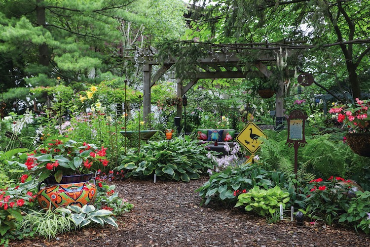 A mulch and stone path meanders through the garden, and is the only thing dividing up the plants. The trees and varying heights of foliage trick the eye into believing that the garden is bigger than it is