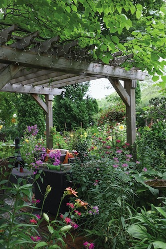 The pergola, covered by a redbud tree, offers lots of shade in a spot that would otherwise be very hot and sunny. Perennials — including hostas, daylilies and ferns — add year-long intrigue to the garden. Annuals in hanging baskets and planters provide a pop of color.