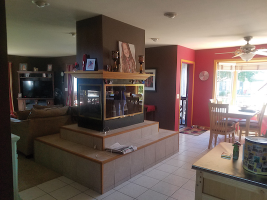 Before, the Geenen's main floor had a darker color scheme and a fireplace that separated the kitchen and family room.